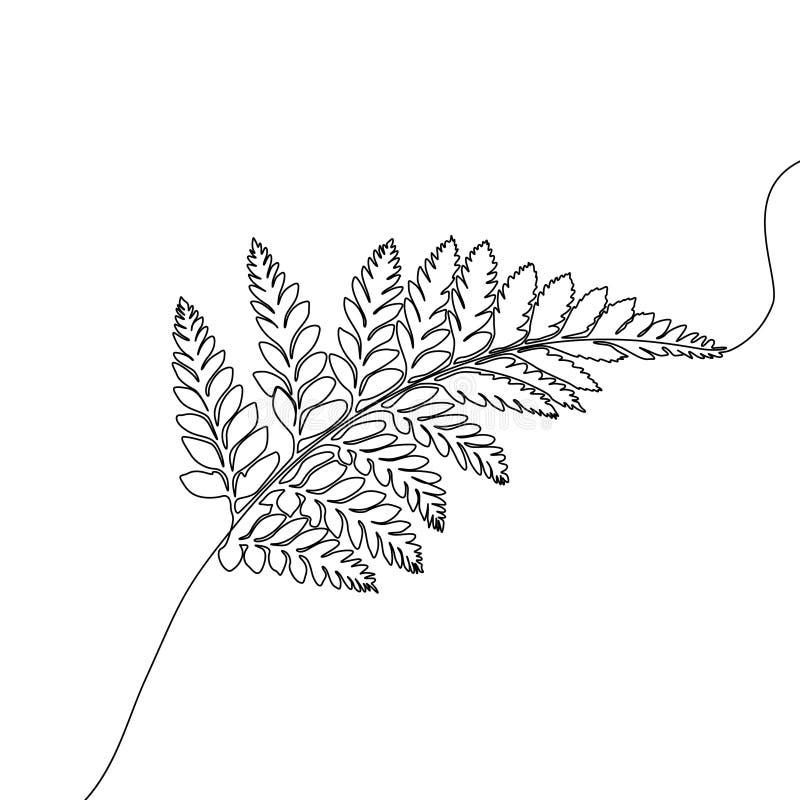 Непрерывная одна линия папоротник чертежа, экзотический тропический завод иллюстрация вектора