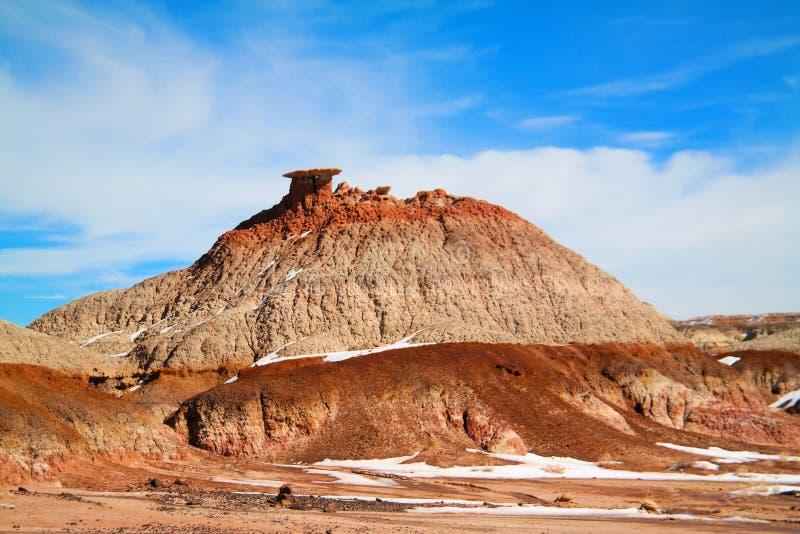 Неплодородные почвы Bisti стоковые фото