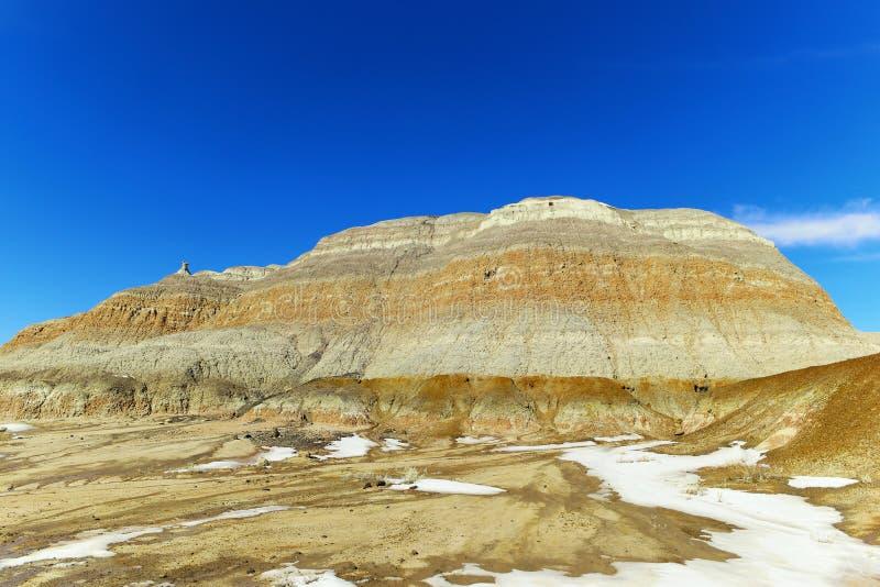 Неплодородные почвы Bisti стоковое изображение rf