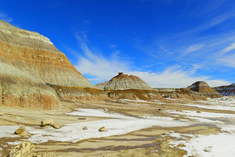 Неплодородные почвы Bisti стоковое фото rf