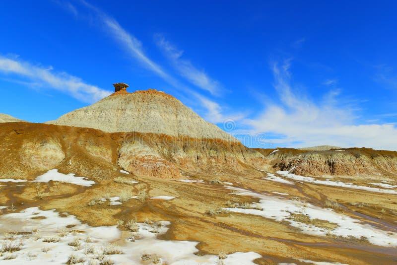 Неплодородные почвы Bisti стоковые изображения rf