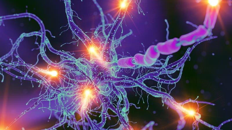 Нервная клетка иллюстрация вектора