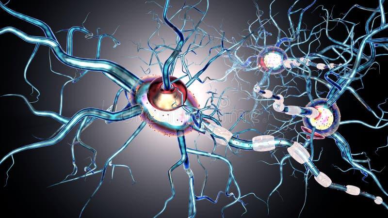 Нервные клетки, концепция для neurodegenerative и неврологическая болезнь, опухоли, операции на головном мозге иллюстрация вектора