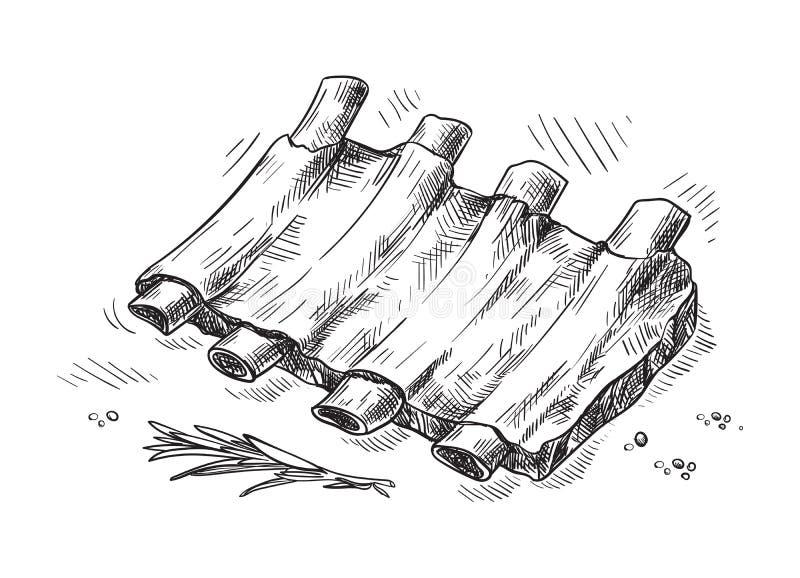 Нервюры свинины изолированные на белой предпосылке иллюстрация штока
