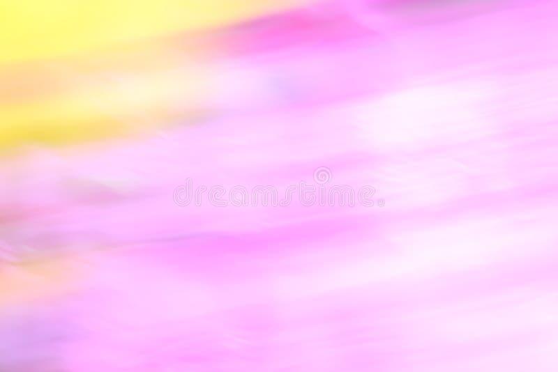 Нерезкость цветка стоковые фотографии rf