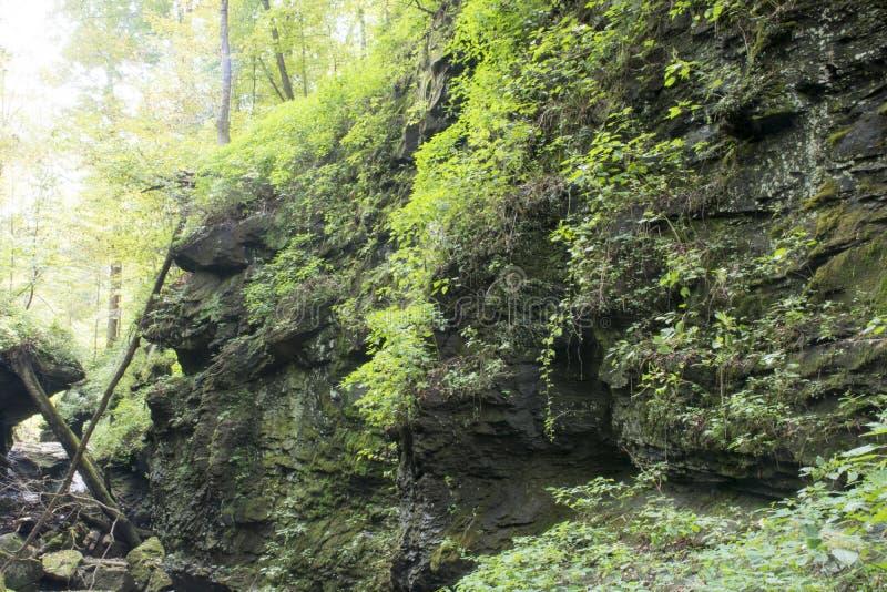 Неровная скала в глубокой полости стоковое изображение rf