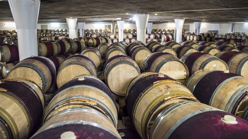 Несется винный погреб, Южная Африка стоковое изображение
