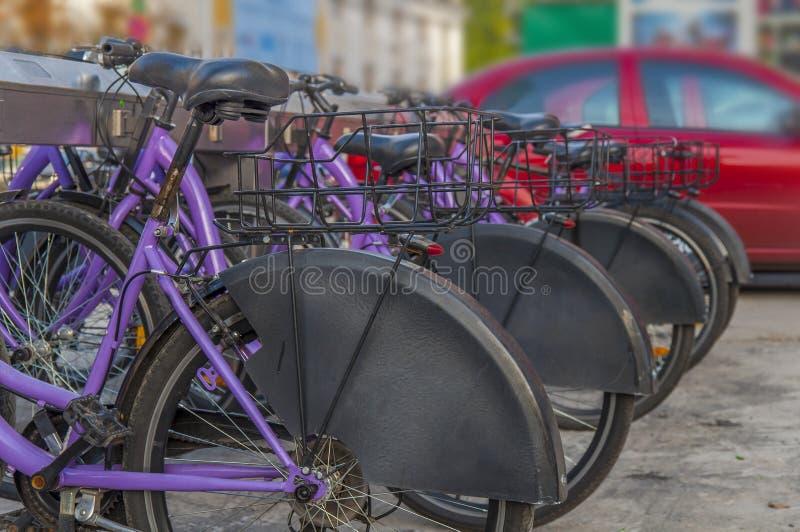 Несколько велосипедов для ренты в городе стоковая фотография
