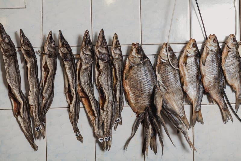Несколько высушенных рыб висят на крыть черепицей черепицей стене стоковое изображение