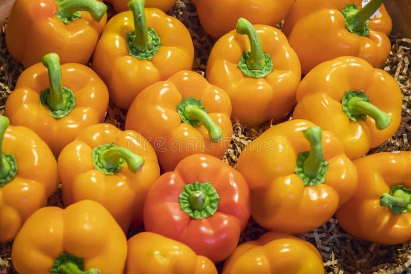Несколько очень вкусных оранжевых перцев закрывают вверх стоковые изображения rf