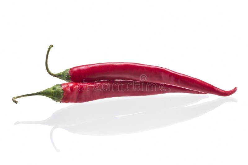 Несколько перцев chili на белой предпосылке стоковые изображения rf
