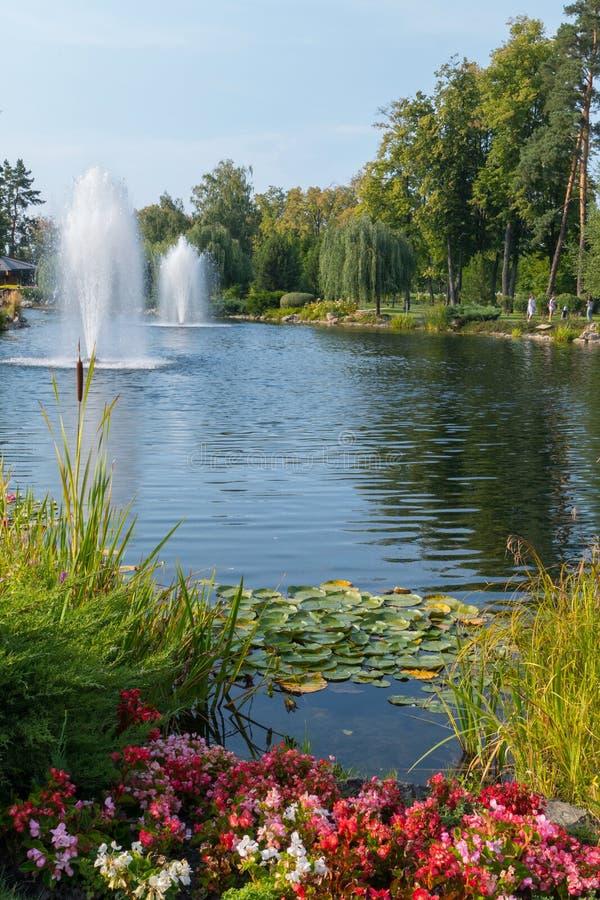 Несколько фонтанов в озере при лилии и тростники воды, окруженные зелеными деревьями, лужайками и цветками, против сини стоковые фото