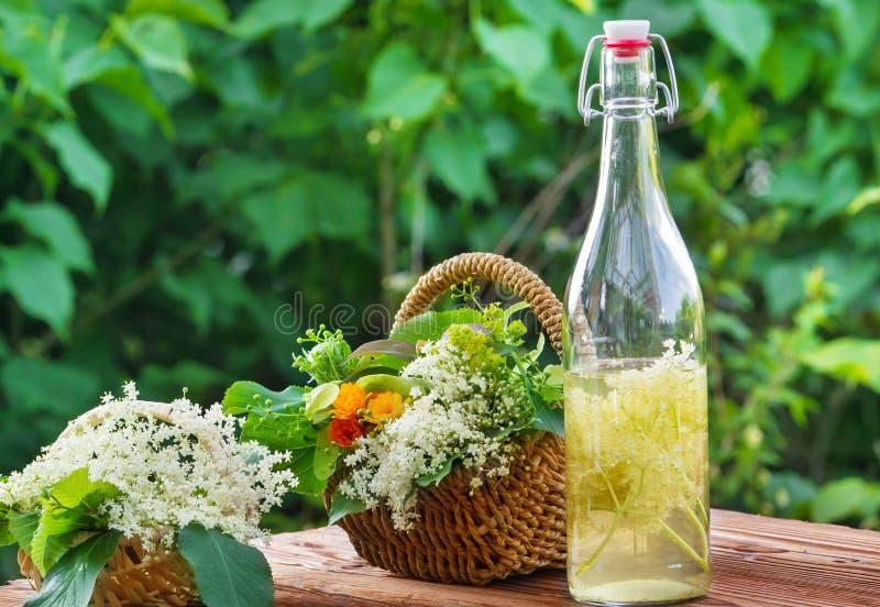 Нетрадиционная медицина, elderflower стоковые изображения