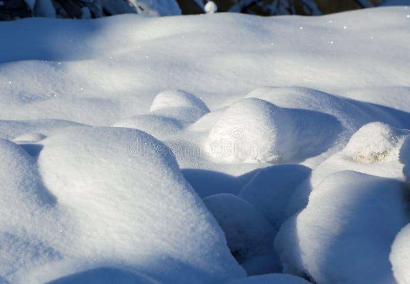 Нетронутый свежий снег стоковая фотография