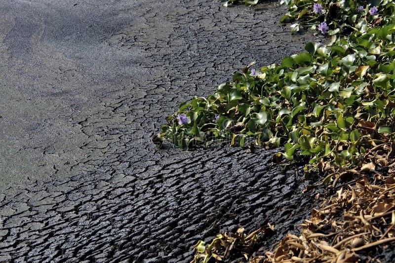 Нечистоты от индустрии - человеческого удара на природе стоковое изображение rf