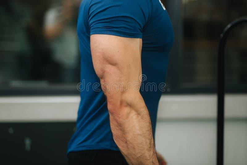 Не будет закрывать вверх мужского трицепса в спортзале до тренировки стоковое фото