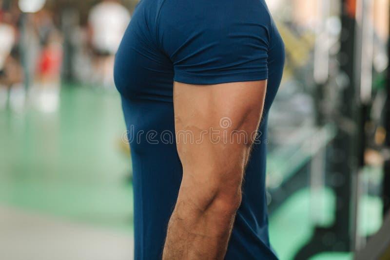 Не будет закрывать вверх мужского трицепса в спортзале до тренировки стоковые изображения