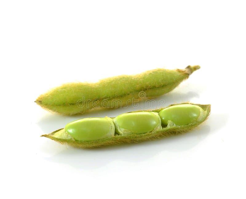 Ниббли Edamame, ые зеленые фасоли сои, японская еда стоковое фото