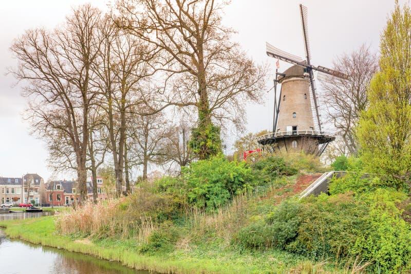 Нидерланд типичный голландский вид на город от парка с водой, дорогой и травой на заходе солнца стоковое фото