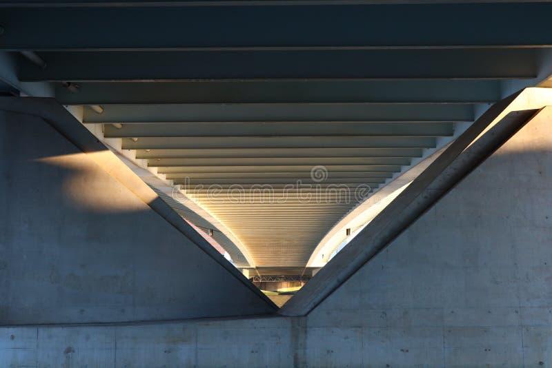 Ниже моста, мост erasmus Роттердама стоковое изображение rf