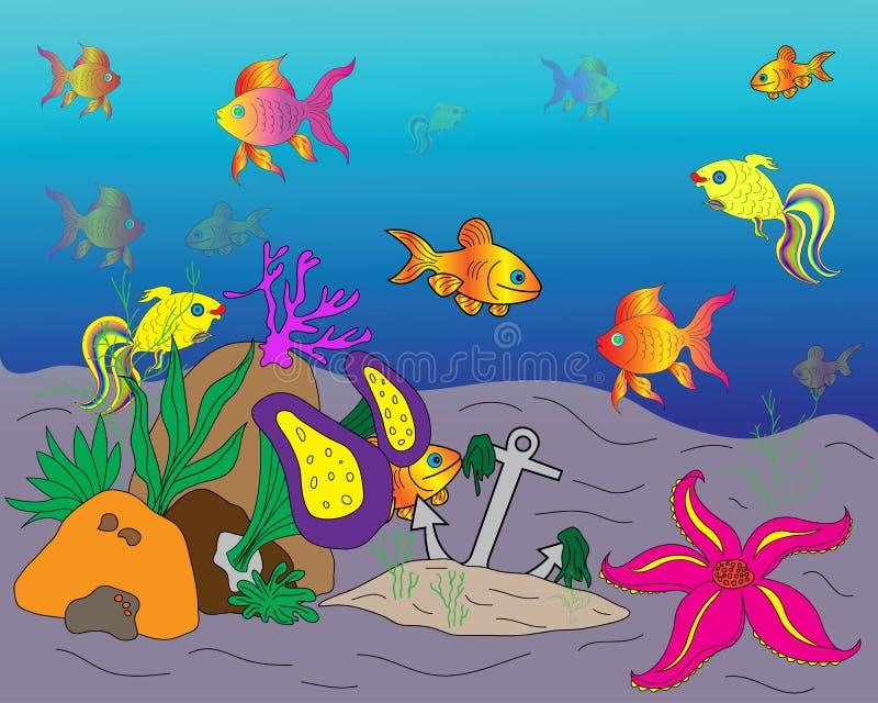 нижний cockleshell засаживает seaweed моря стоковое фото