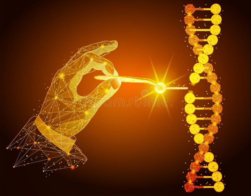 Низкая поли иллюстрация манипуляции двойной спирали ДНК с с голыми руками, щипчиками иллюстрация штока
