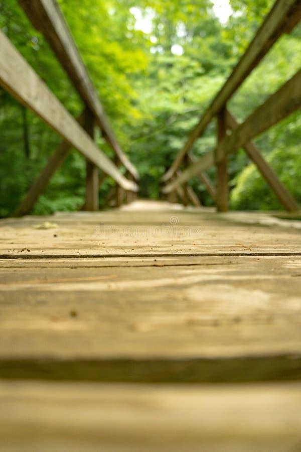 Низкий взгляд Footbridge Hiker вдоль аппалачского следа стоковые фотографии rf