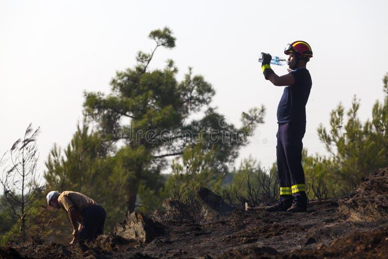 Низкий пожар на пуще Seich Sou - Thessaloniki маштаба, Греция стоковые изображения rf
