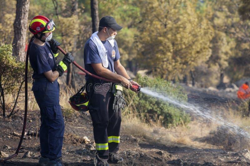 Низкий пожар на пуще Seich Sou - Thessaloniki маштаба, Греция стоковая фотография rf