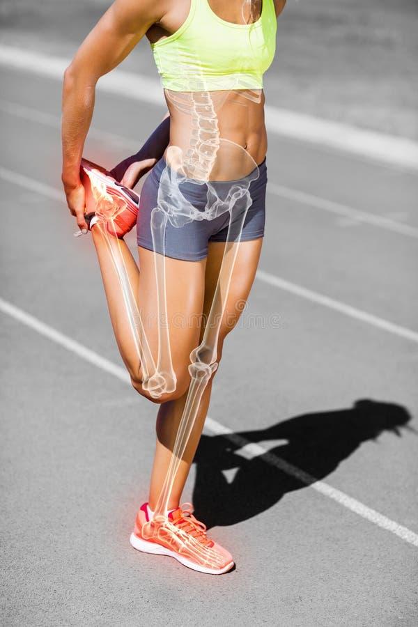 Низкий раздел спортсменки протягивая ногу на следе стоковое изображение rf