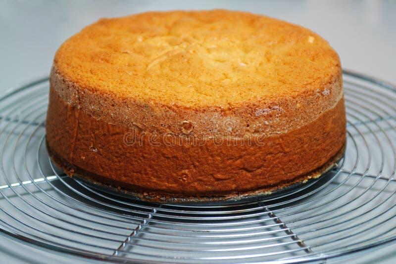 низкопробный имбирь торта стоковое фото