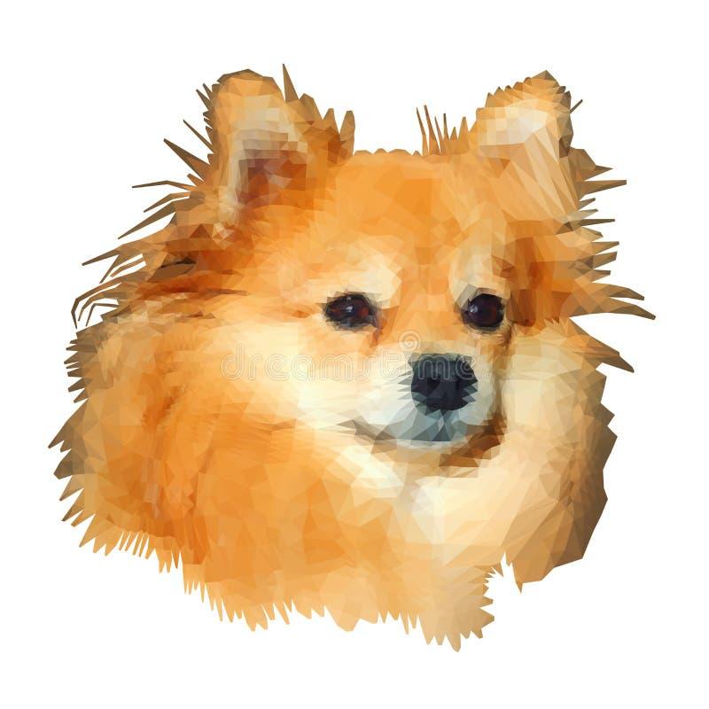 Низко-поли моделирование Шпиц-собака Pomeranian иллюстрация вектора