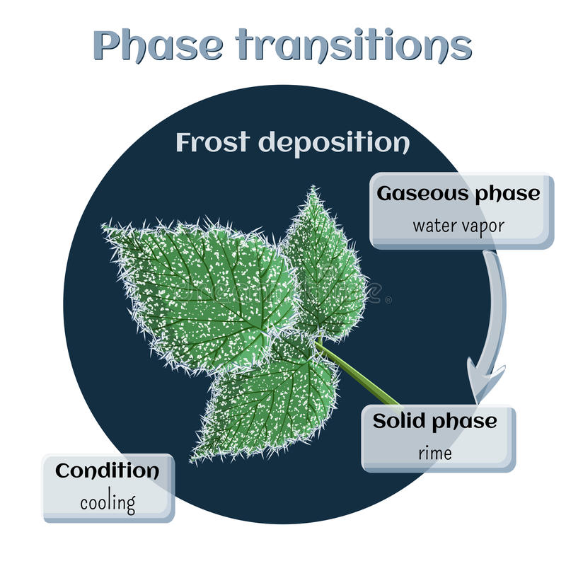 Низложение Frost - мягкая гололедь на поленике выходит Переход участка от газообразного к полупроводниковому иллюстрация штока