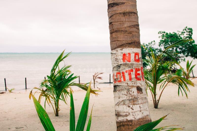 Никакой околачивайтесь знак на море пальмы и overcast карибском стоковая фотография