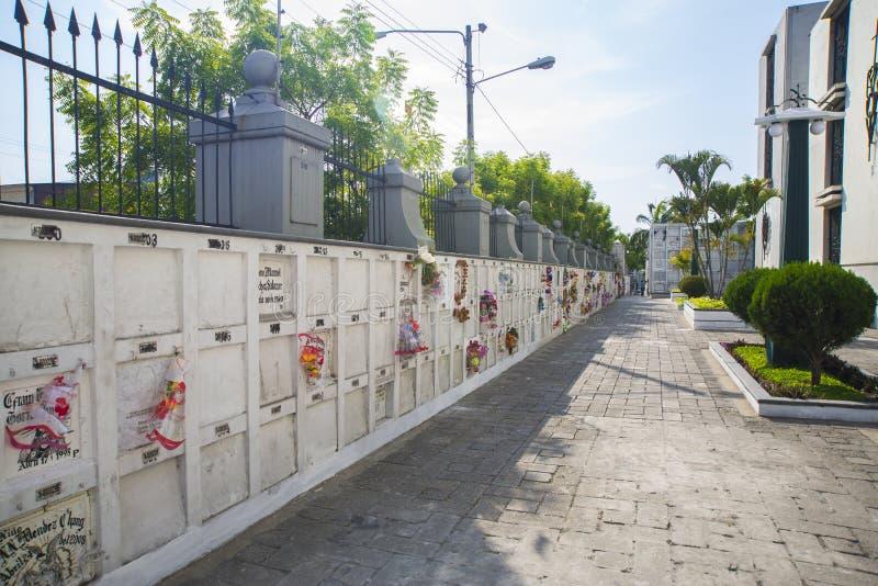 Ниши кладбища в стене стоковое фото