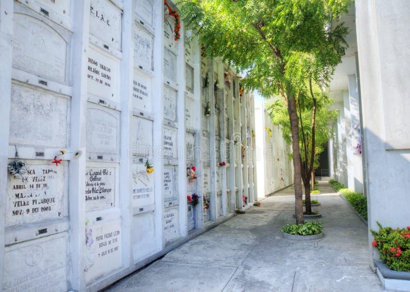 Ниши кладбища в стене стоковые изображения