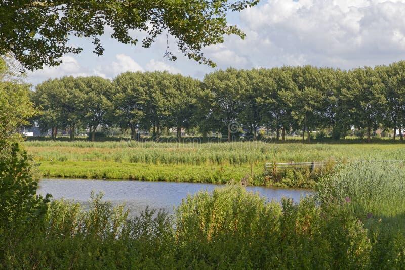 Нидерландская сельская местность стоковая фотография rf