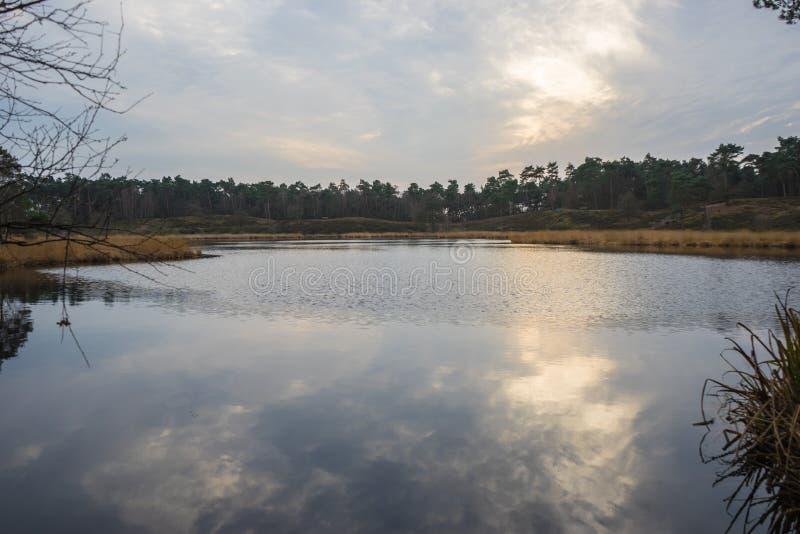 Нидерландское озеро стоковое фото rf
