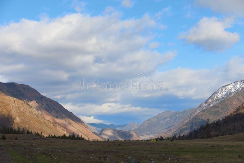 дни altai продолжают лето гор Красивейший ландшафт гористой местности Россия стоковая фотография rf