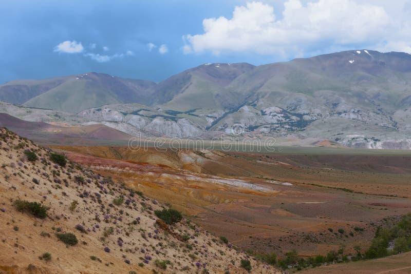 дни altai продолжают лето гор Красивейший ландшафт гористой местности Россия стоковые фото