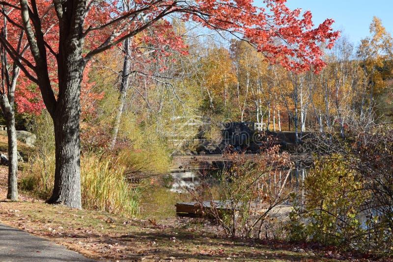 Новая Англия осенью стоковые изображения rf