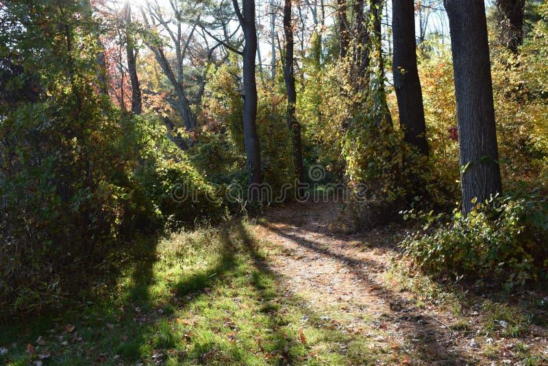 Новая Англия осенью стоковая фотография