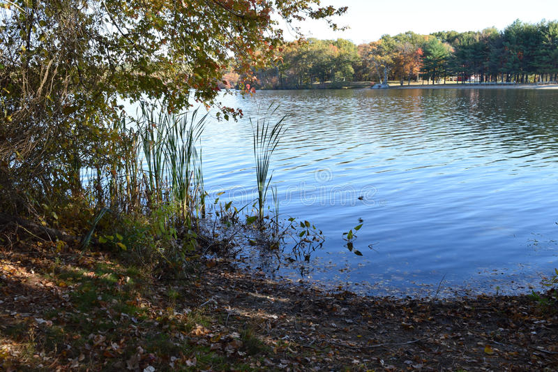 Новая Англия осенью стоковое изображение rf