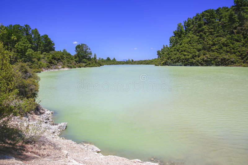 Новая Зеландия, Rotorua, страна чудес Wai-O-Tapu термальная, озеро Ngakor стоковое фото rf