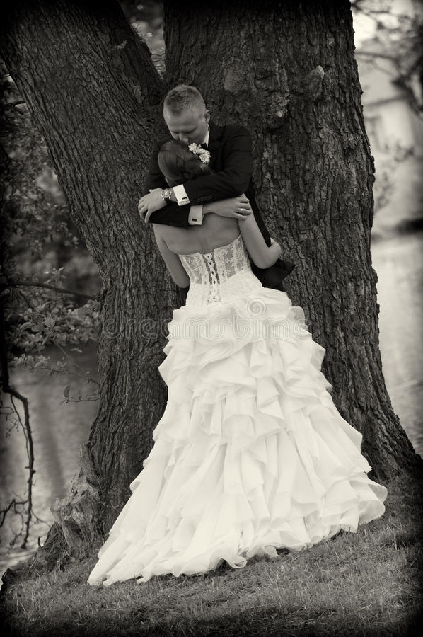 Новобрачные в парке стоковая фотография