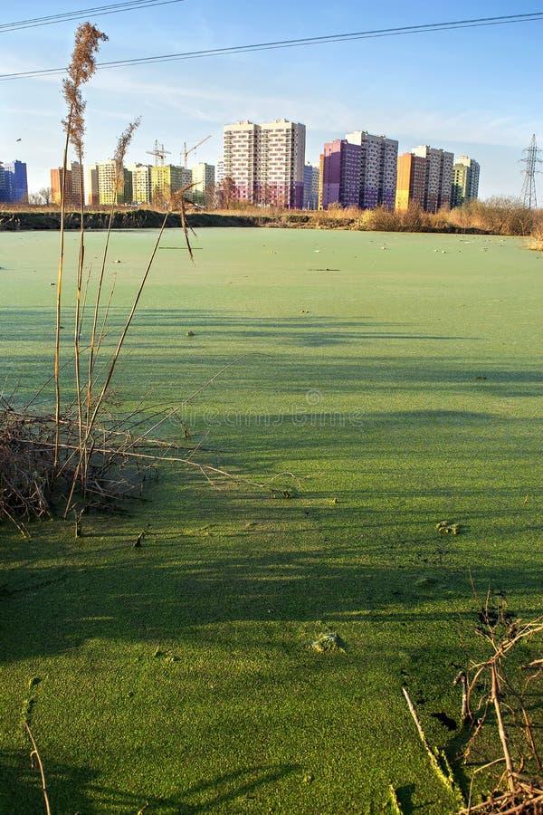 Новостройка и жилые дома под конструкцией на окраинах большого города и нового duckweed района и зеленых стоковые изображения rf