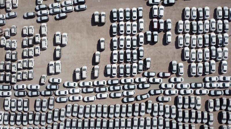 Новые автомобили предусматриванные в защитных белых листах стоковые фотографии rf