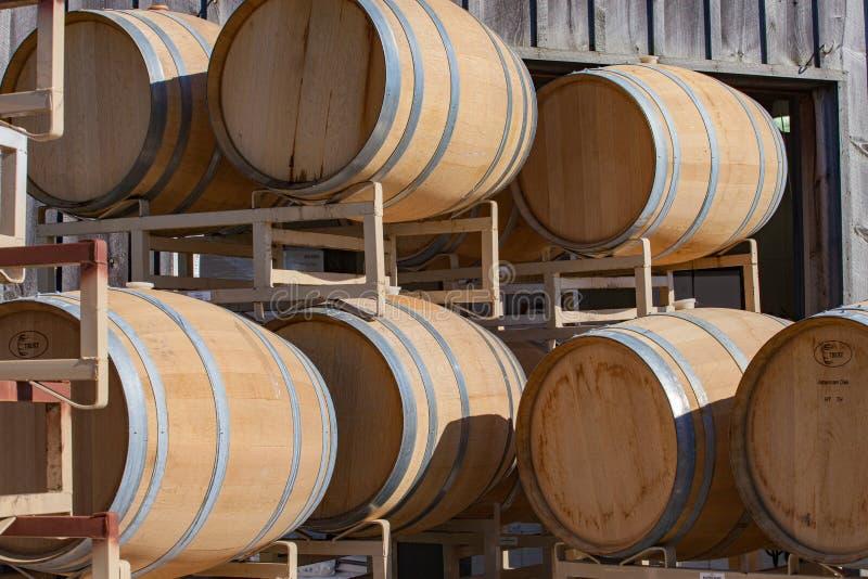 Новые бочонки подготавливают для того чтобы заполнить на винодельне стоковая фотография rf