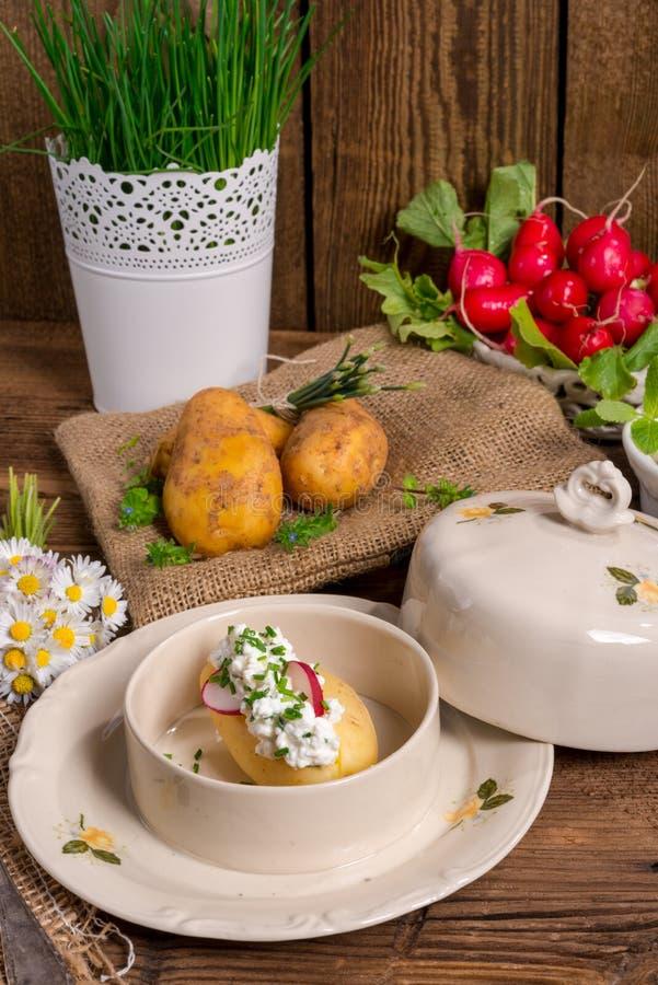 Download Новые картошки с творогом весны Стоковое Изображение - изображение насчитывающей здорово, печь: 40580683