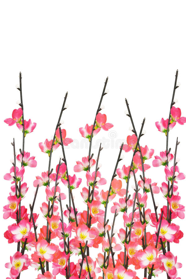 Новый Год китайца вишни цветений предпосылки стоковое фото rf